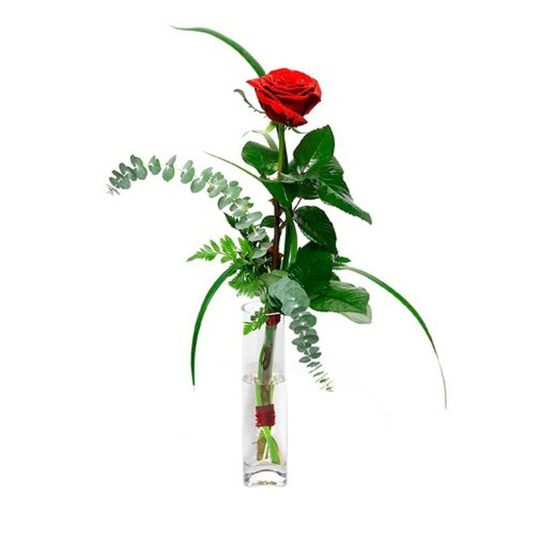 Florero 1 Rosa Roja