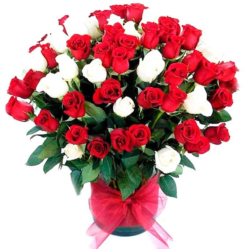 Florero 80 Rosas Rojas y Blancas