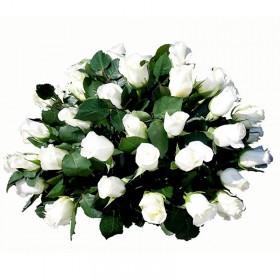 Flores Condolencias Rosas Blancas