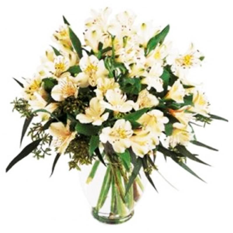 Flores Condolencias Florero 30 Astromelias Blancas