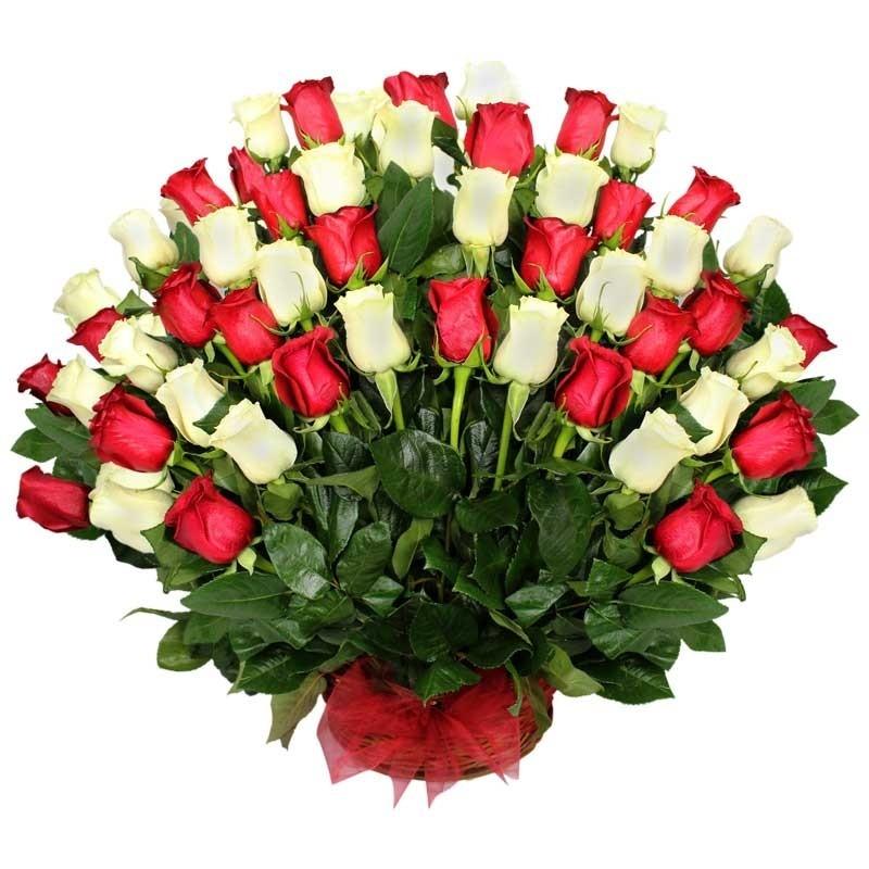 Cesta de Rosas 50 Rosas Blancas y Rojas
