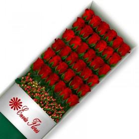 Rosas Rojas en Caja 36 Rosas